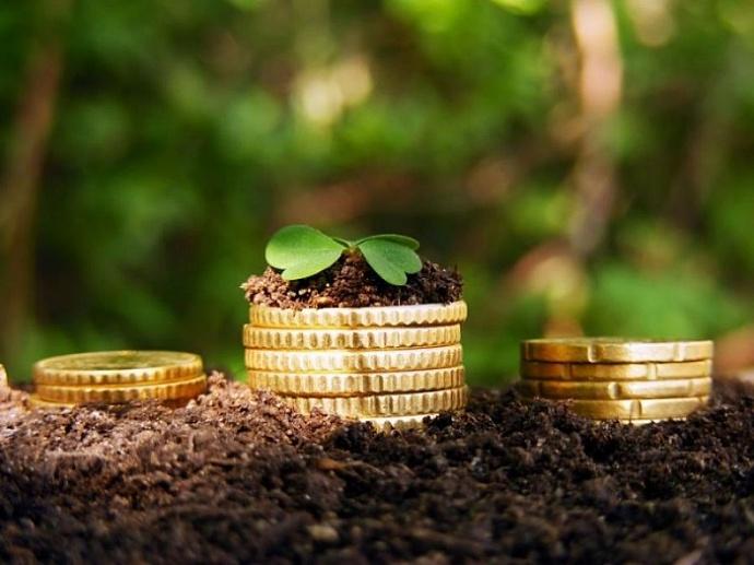 Льготы для пенсионеров в 2018 году: освобождение 6 соток земли от налога